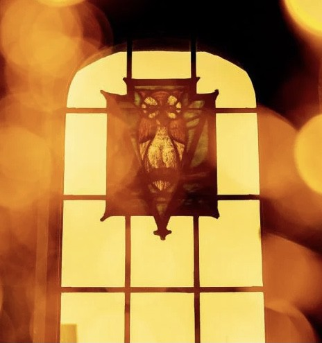 Yellow stained glass of an owl